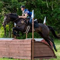 Steve Storm Photography   Equestrian